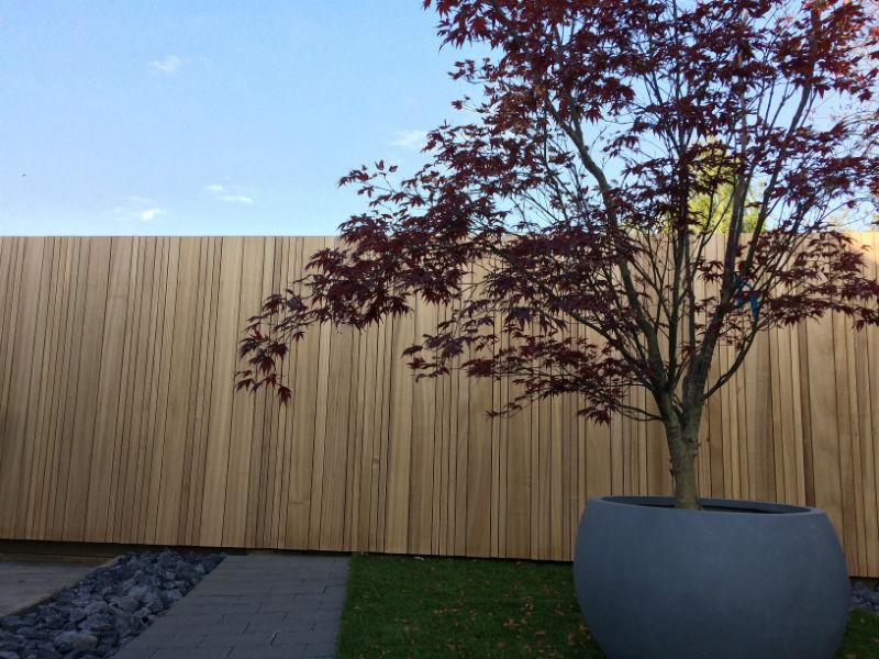 Houte omheining Ayous Thermo behandeld, duurzaam hout, Limburg, Beringen